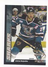 2010-11 Worcester Sharks (AHL) Andrew Desjardins (Adler Mannheim)