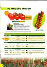clause sementi pomodoro rosso  ciliegino creativo f1 busta x 1000 semi