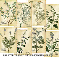 9 Card Toppers Herbs,Scrapbooking,CardMaking,Sage,Lavender,Herbs Journaling,Herb