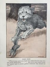Beautiful Vintage 1926 Old English Sheepdog Dog Print Charles Livingston Bull