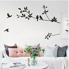 Tree Birds Leaf Wall Paper Removable Art Wall Decal Decor Sticker Mural
