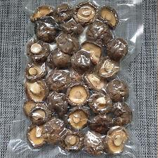 Dried Shiitake Mushrooms 3-4CM Kit Spores Spawn Substrate Magic Mushrooms 100g
