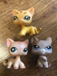 Littlest Pet Shop Short Hair Cat Figure Toy Bundle LPS Vintage 1363 1377 1764 C