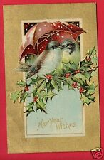 NEW YEAR WISHES BIRDS UMBRELLA 1909 FRANCES SMITH MONROEVILLE INDIANA  POSTCARD