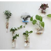 Hanging Plant Flower Vase Terrarium Container Hydroponic Pot DIY Garden