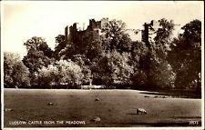 Ludlow Shropshire England ~1950/60 Castle from the Meadows Burg Schloss Schafe