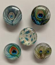 New listing Handmade Round Peacock Design Glass Fridge/Memo Board Magnet Set (set of 5)
