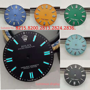 Stainless Steel 28MM Watch Luminous Dial for Movement 8215/8200/2813/2836/2824