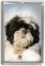 Shih Tzu Fridge Magnet No 11 by Starprint - Auto combined postage