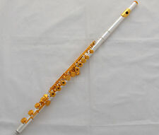 Top 17 Open Hole Silver Gold Flute Cupronickel Split E offset G key With Case