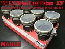 6.5 6.5L Diesel 18:1 MARINE Pistons +.020 MAHLE Coated (set of 8) w/ Rings