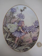ROYAL WORCESTER OVAL FLOWER FAIRY PLATE CICELY MARY BARKER CHICORY 75 YEARS