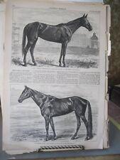 Vintage HORSE Print,GOLDSMITH MAID,Harpers,1869
