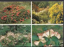 Herefordshire Postcard - Hergost Croft Gardens, Kington  WC148