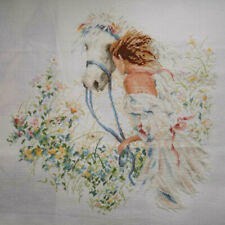 Handmade New Finished Completed Cross Stitch - Woman and horse - P59