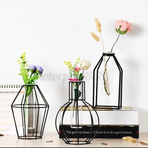 Plant Hydroponic Container Glass Test Tube Vase Metal Stand Flower Pots Decor