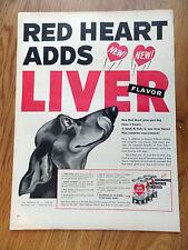 1953 Red Heart Dog Food Ad Dachshund Dog