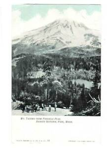 [21439] Mt. Tacoma from Pinnacle Peak - Rainier Natl. Park-WA 1905