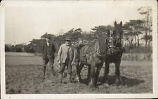 Cowes, Isle of Wight photo. Horses Ploughing by Stevens, Westhill Road, Cowes.