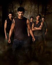 Twilight : New Moon [Cast] (46865) 8x10 Photo