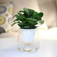 Self-watering Plant Flower Pot Wall Hanging Planter For Home,Garden Office Decor