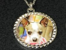 "Dog Chihuahua Fawn & White Sweet Charm Tibetan Silver 18"" Necklace BIN Mix K"