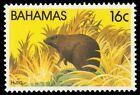 BAHAMAS 515 (SG627) - Wildlife