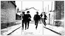 Beatles limited edition print 36 x 20 MATCHPOPART
