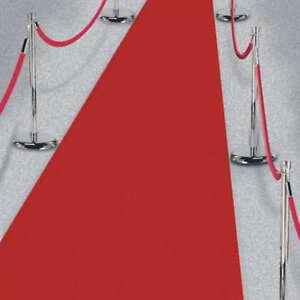 Hollywood Red Carpet Fabric Floor Runner Oscar Wedding Party Decoration ~ 15ft