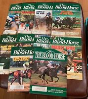 THE BLOOD HORSE LOT OF (10) 1990's THOROUGHBRED HORSE RACING MAGAZINES BH-18 🐎