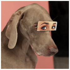 WILLIAM WEGMAN signed limited edition 2019 photograph Magnum Square Aperture