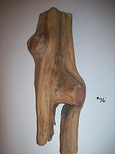 CEDAR (OAK/OSAGE ORANGE/HEDGE) CARVING HOBBY CRAFT TAXIDERMY WOOD WALL ART #76