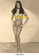 1960 DESHA - Pinup Girl, Burlesque Dancer, Vintage - Photo