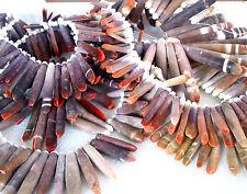 "15"" Singing beads GRADUATED long tusk spike OCEAN life creature sea stick plant"