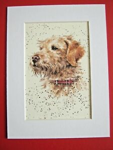 """LABRADOODLE DOG MOUNTED PRINT 6 x 8"""" WATERCOLOR PRINT ART PICTURE"""