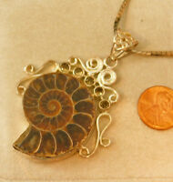 Nautilus Shell Ammonite Fossil Sterling Silver Slide Pendant Necklace 5j 23