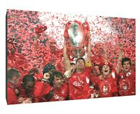 LIVERPOOL FC 2019 champions canvas wall art Wood Framed Ready to Hang XXL