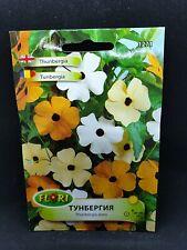 Black Eyed Susan Vine Thunbergia Mix Seeds Climbing Plant
