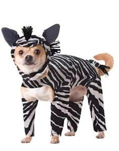 Pet Dog Cat Funny ANIMAL PLANET Zebra Dog Costume