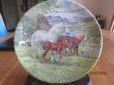 WELSH MOUNTAIN PONY PLATE - BRITAIN'S WILD PONIES - DEREK BRAITHWAITE