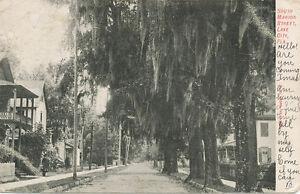 Lake City FL * South Marion Street  1906 * Columbia Co.