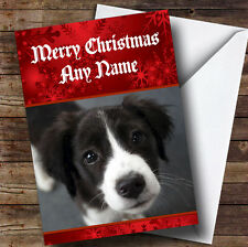Border COLLIE PUPPY DOG PERSONALIZZATA NATALE AUGURI CARD