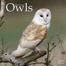 OWLS - 2020 WALL CALENDAR - BRAND NEW - 807145
