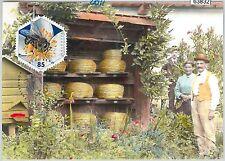 63832 - SWITZERLAND - POSTAL HISTORY: MAXIMUM CARD 2011 -  BEES
