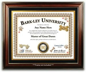 Great Dane PERSONALIZED CERTIFICATE Diploma Dog Tag Rope Toy Breeder Lover GIFT
