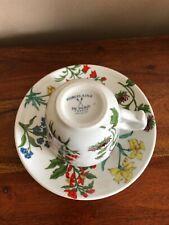 Grande Tasse et sous tasse Porcelaine de Paris décor Herbier XXe
