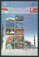 Indonesia 2008 Culture, Cats, Flowers joint Turkey MNH Souvenir sheet