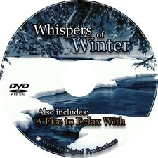 DVD Relaxing Winter Office Spa Snowfall Soothing Nature Christmas Video Scenes