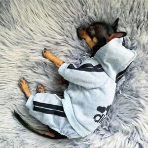 Pet Clothes French Bulldog Puppy Dog Costume Pet Jumpsuit Chihuahua Pug Pets Dog