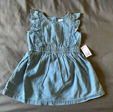 Toddler Girl 12-18 Month Baby Gap Blue Chambray Ruffle Dress & Bloomers
